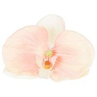 Argola Orquídea Phaleonopsis