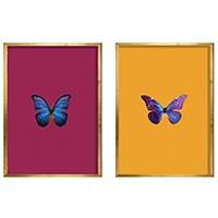 Set De Quadros Swallowtail