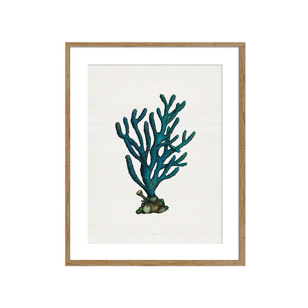 Quadro Coral